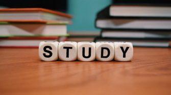 burse de studii