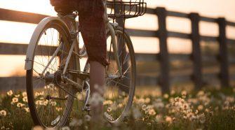 bicicultura serie de ateliere ciclism