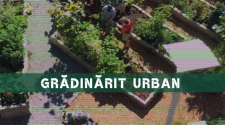 urban remedy voluntariat ecologie
