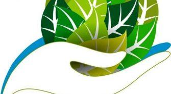 forumul ong-urilor de mediu