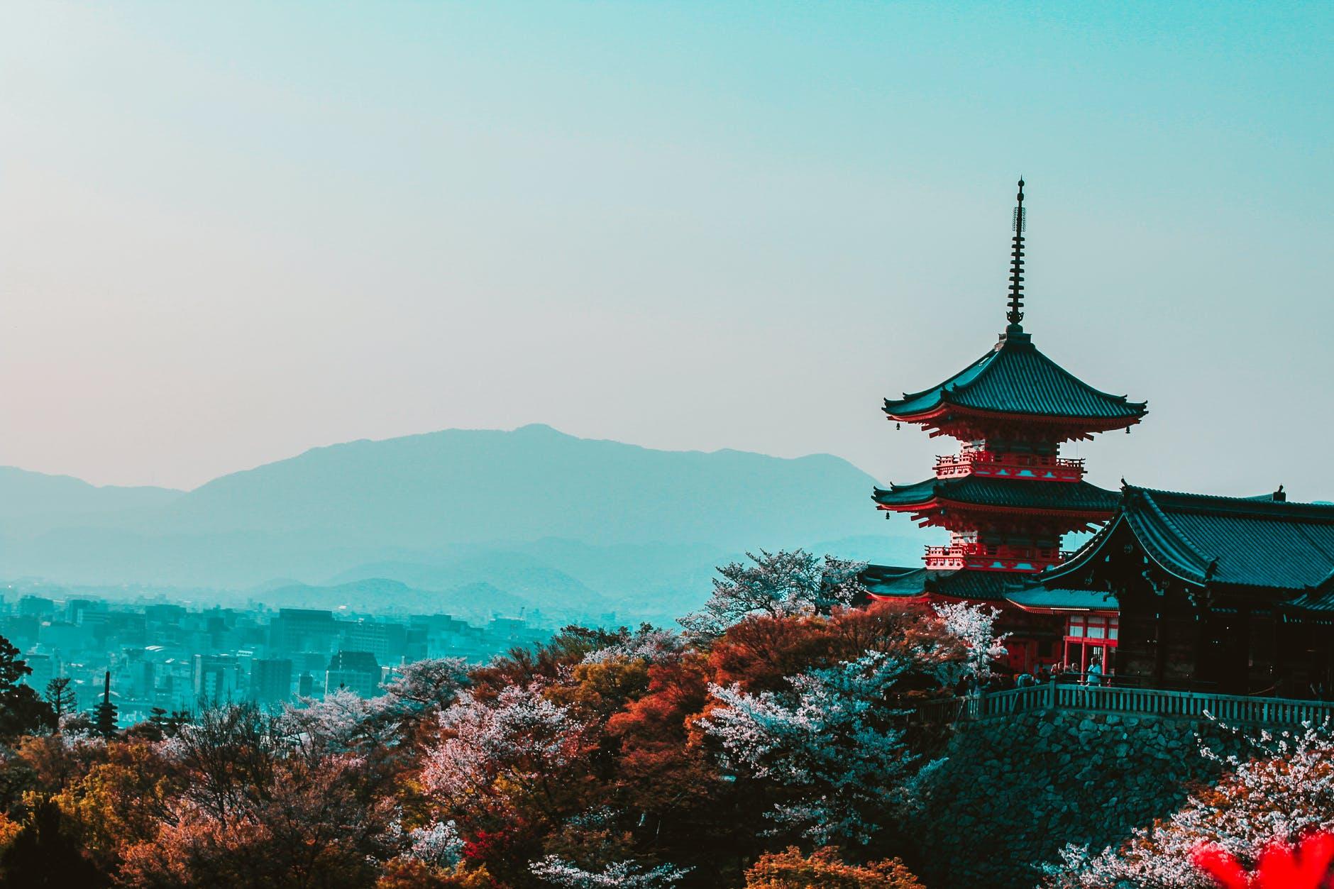 burse de studiu în japonia