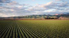 instruiri în domeniul agroecologic