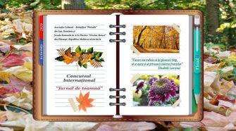 Concursul Internațional jurnal de toamnă