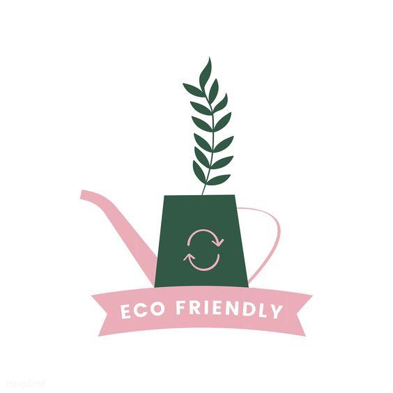produse ecologice sfaturi