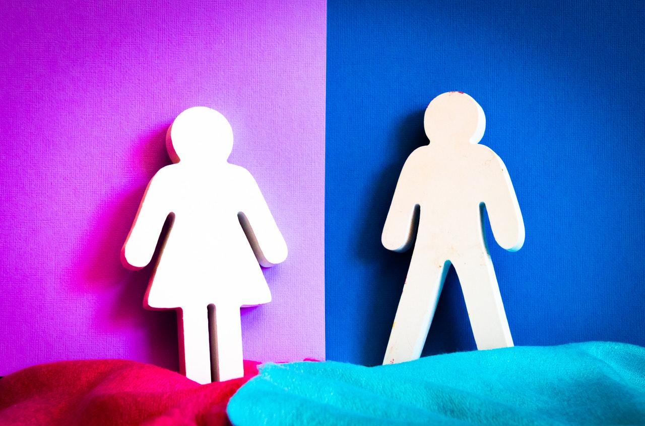 program de mentorat egalitatea de gen