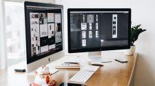 job consultant digitalizare