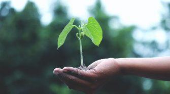 concurs tvc remediu pentru mediu