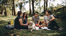 proiect erasmus+ pentru tineri