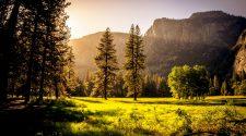 rezervații naturale