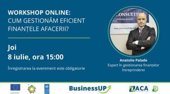 workshop online management financiar al unei afaceri