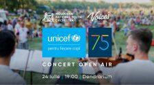 concert open air