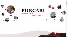 internship program purcari