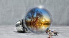 economisirea energiei electrice
